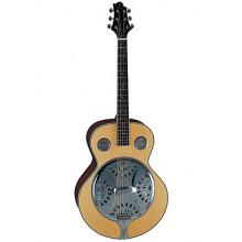 Акустическая гитара Samick SJD 210