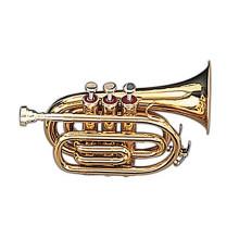 Мини труба Maxtone TT-Mini