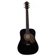 Акустическая гитара Hohner HW220 TBK
