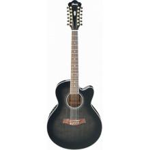 Электроакустическая гитара Ibanez AEL2012E TKS