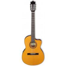 Классическая гитара с пьезозвукоснимателем Ibanez G5TECE NT