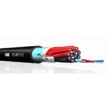 Мультикорный кабель Klotz PX12