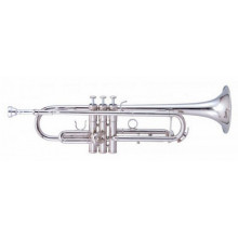 Труба Maxtone TTC60N2