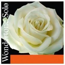 Струны для скрипки Pirastro Wondertone Solo