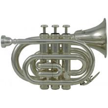 Труба Roy Benson PT-101S