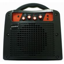Гитарный комбик Soundking SKAK15G