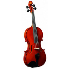 Скрипка Strunal 205wA