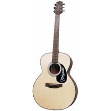 Акустическая гитара Takamine G220 NS