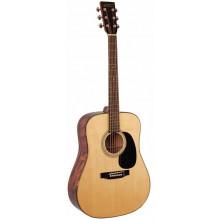 Акустическая гитара Recording King RD10