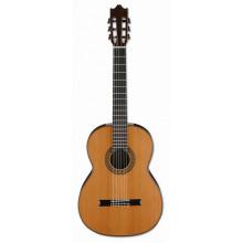 Классическая гитара Ibanez G500 NT